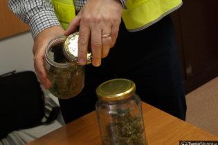 3 lata więzienia za marihuanę w słoikach